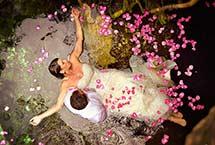Botón Galería de bodas en playa del Carmen